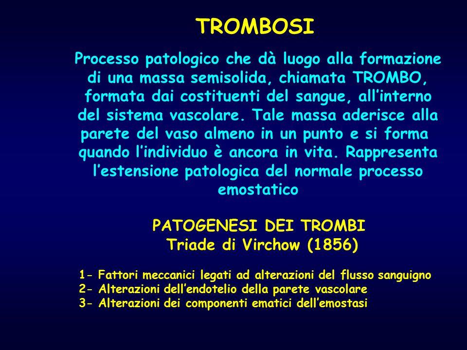 TROMBOSI Processo patologico che dà luogo alla formazione