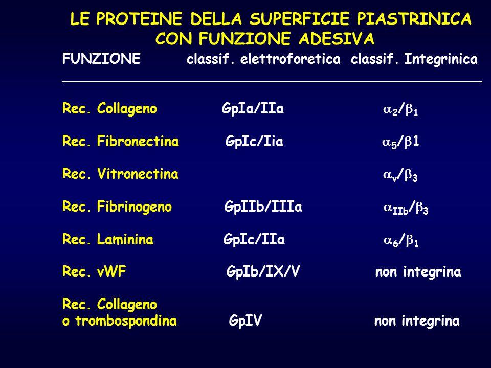 LE PROTEINE DELLA SUPERFICIE PIASTRINICA CON FUNZIONE ADESIVA