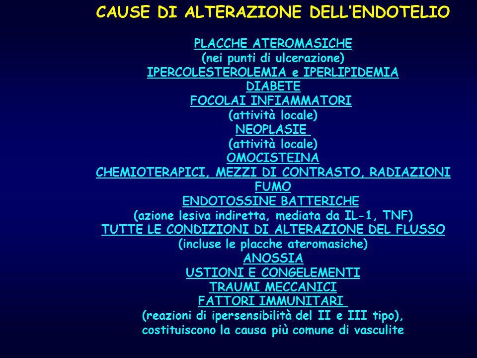 CAUSE DI ALTERAZIONE DELL'ENDOTELIO
