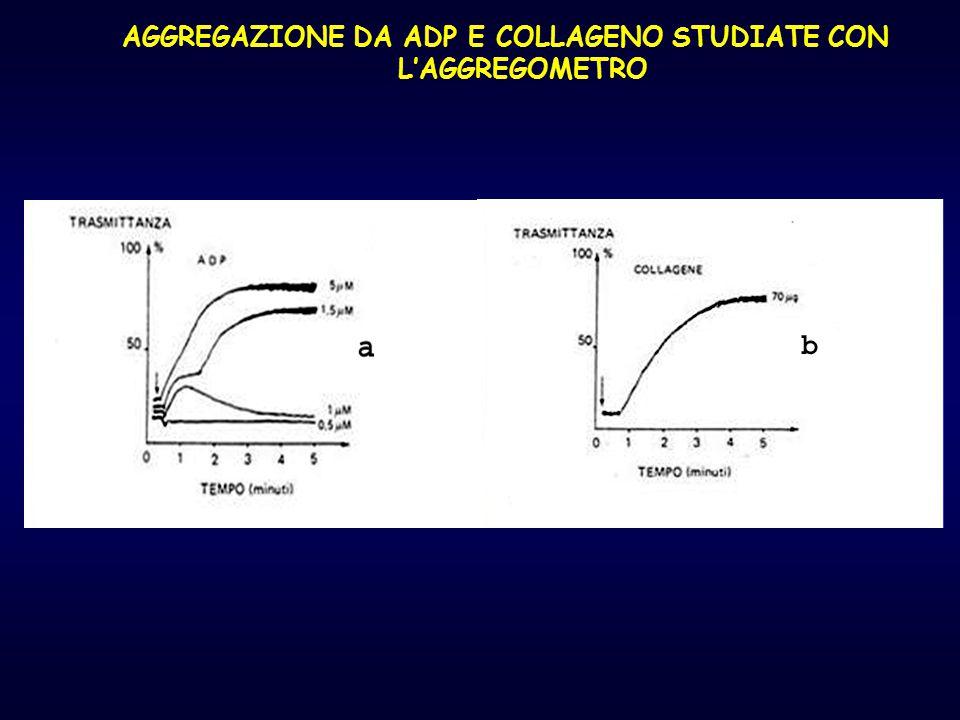 AGGREGAZIONE DA ADP E COLLAGENO STUDIATE CON