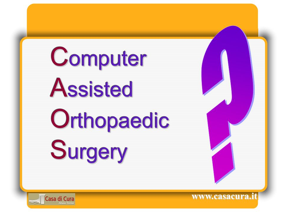 Computer Assisted Orthopaedic Surgery