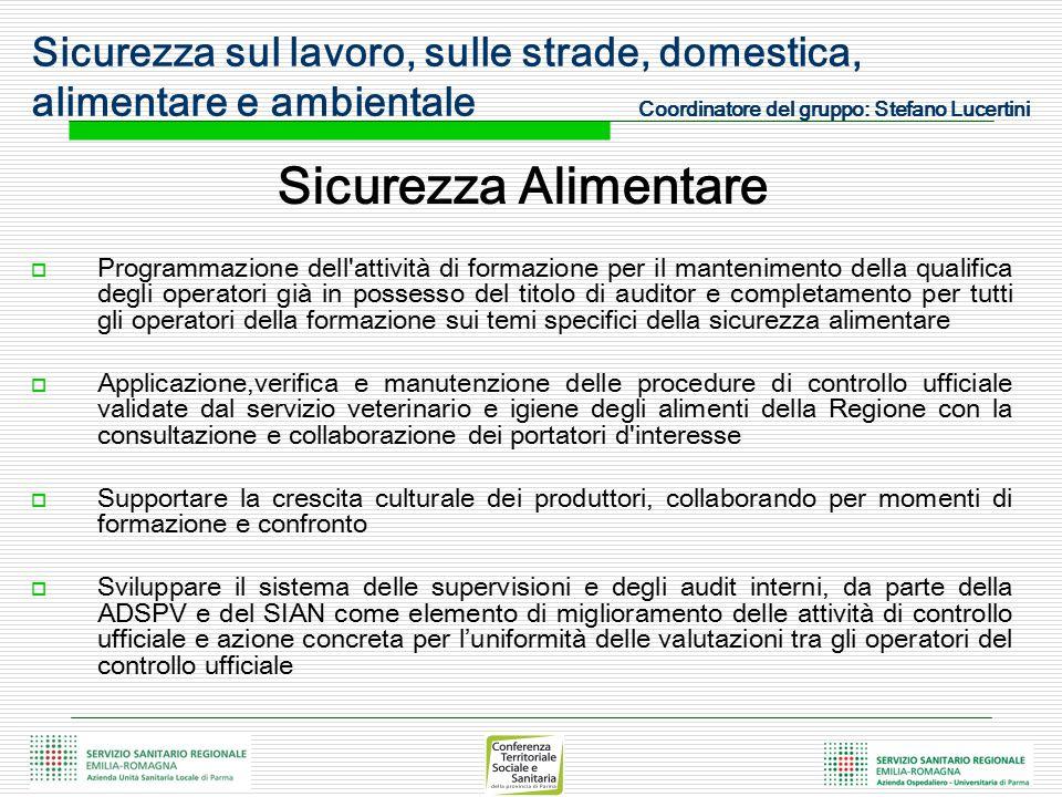 Sicurezza sul lavoro, sulle strade, domestica, alimentare e ambientale Coordinatore del gruppo: Stefano Lucertini