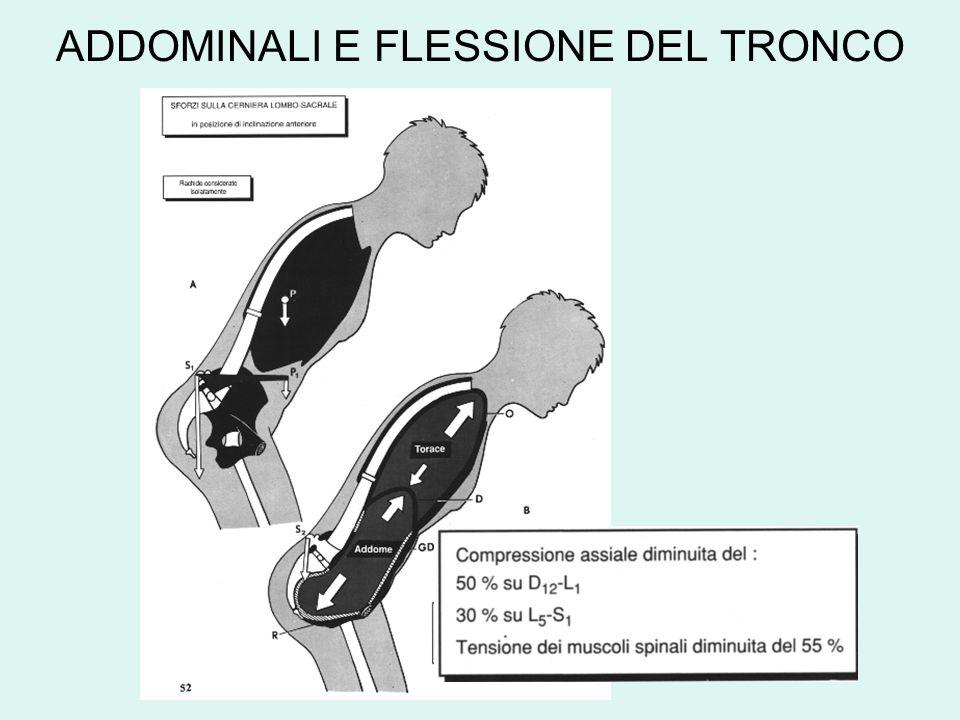 ADDOMINALI E FLESSIONE DEL TRONCO