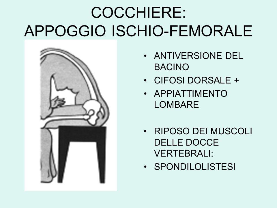 COCCHIERE: APPOGGIO ISCHIO-FEMORALE