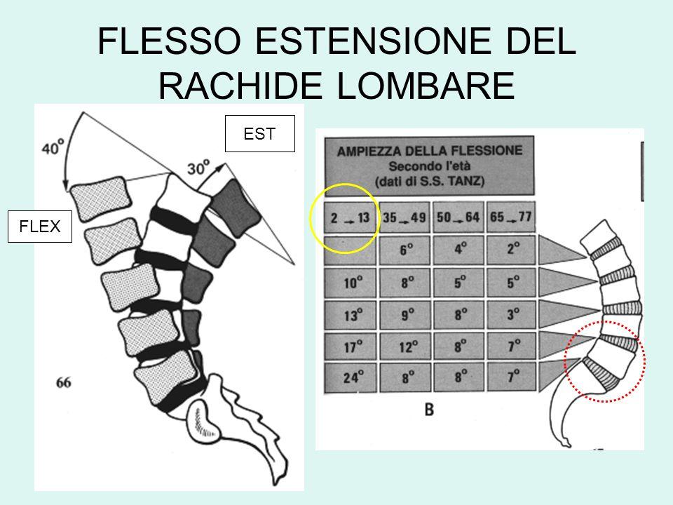 FLESSO ESTENSIONE DEL RACHIDE LOMBARE