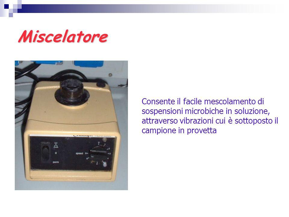 Miscelatore Consente il facile mescolamento di sospensioni microbiche in soluzione, attraverso vibrazioni cui è sottoposto il campione in provetta.