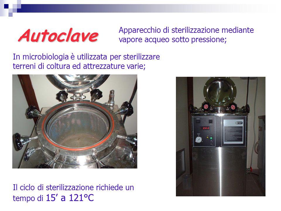 Autoclave Apparecchio di sterilizzazione mediante vapore acqueo sotto pressione;