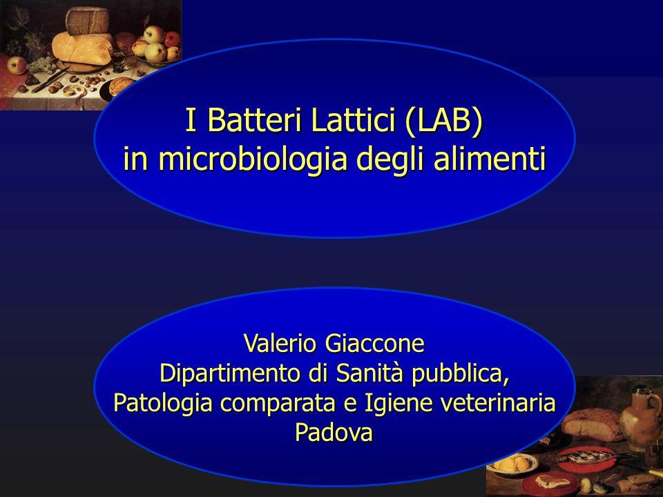 I Batteri Lattici (LAB) in microbiologia degli alimenti