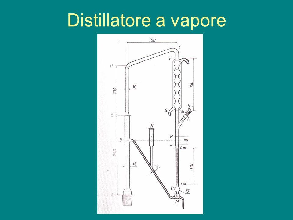 Distillatore a vapore