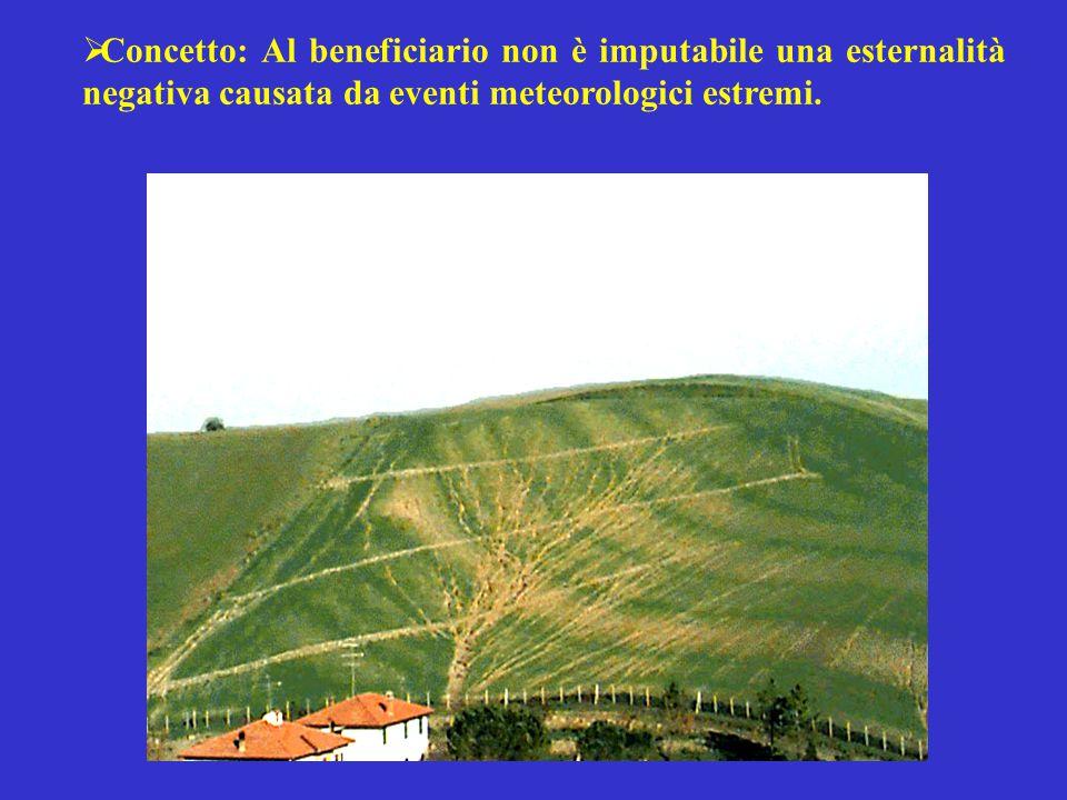 Concetto: Al beneficiario non è imputabile una esternalità negativa causata da eventi meteorologici estremi.