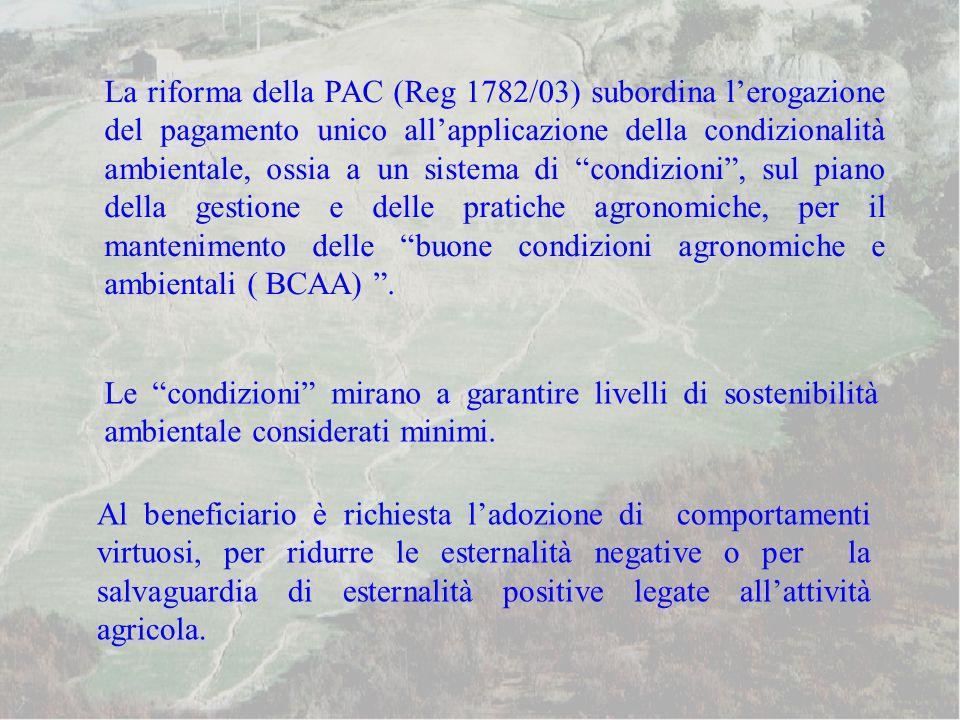 La riforma della PAC (Reg 1782/03) subordina l'erogazione del pagamento unico all'applicazione della condizionalità ambientale, ossia a un sistema di condizioni , sul piano della gestione e delle pratiche agronomiche, per il mantenimento delle buone condizioni agronomiche e ambientali ( BCAA) .
