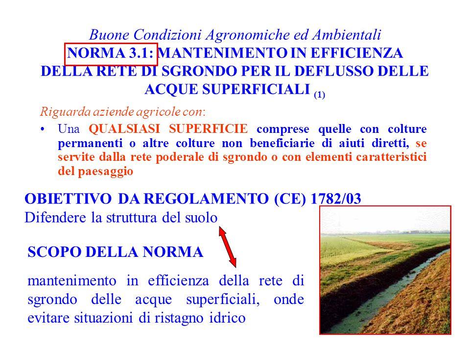OBIETTIVO DA REGOLAMENTO (CE) 1782/03 Difendere la struttura del suolo