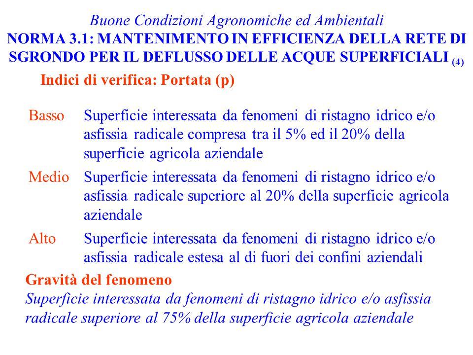 Buone Condizioni Agronomiche ed Ambientali NORMA 3