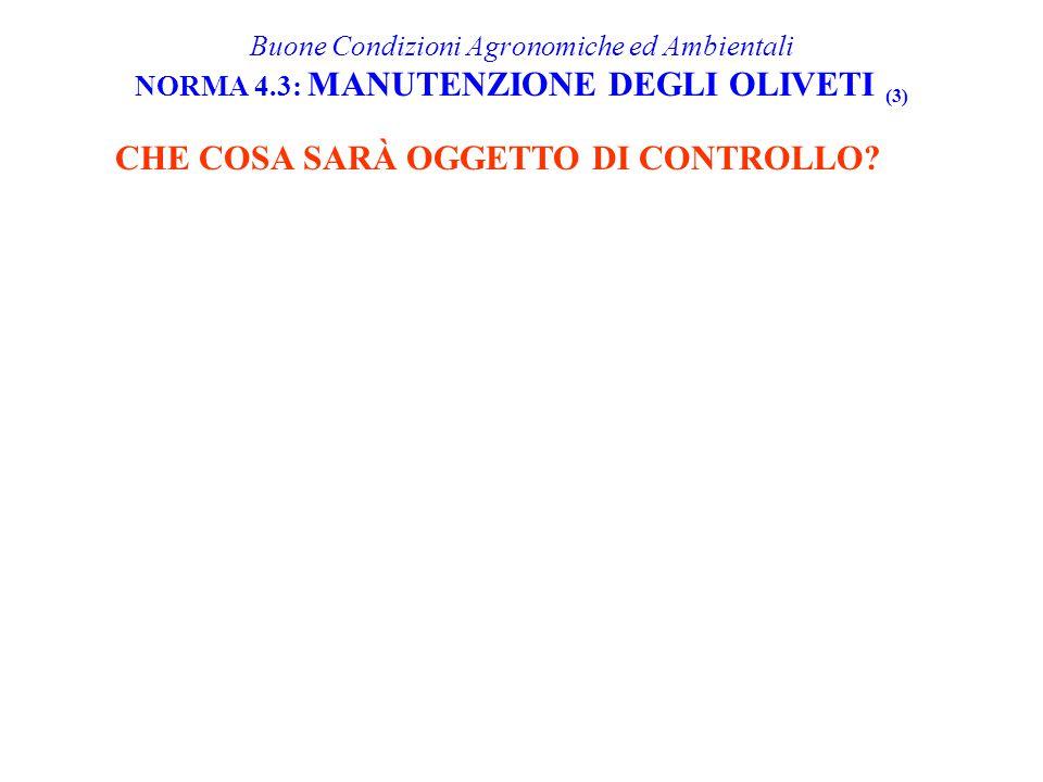 CHE COSA SARÀ OGGETTO DI CONTROLLO