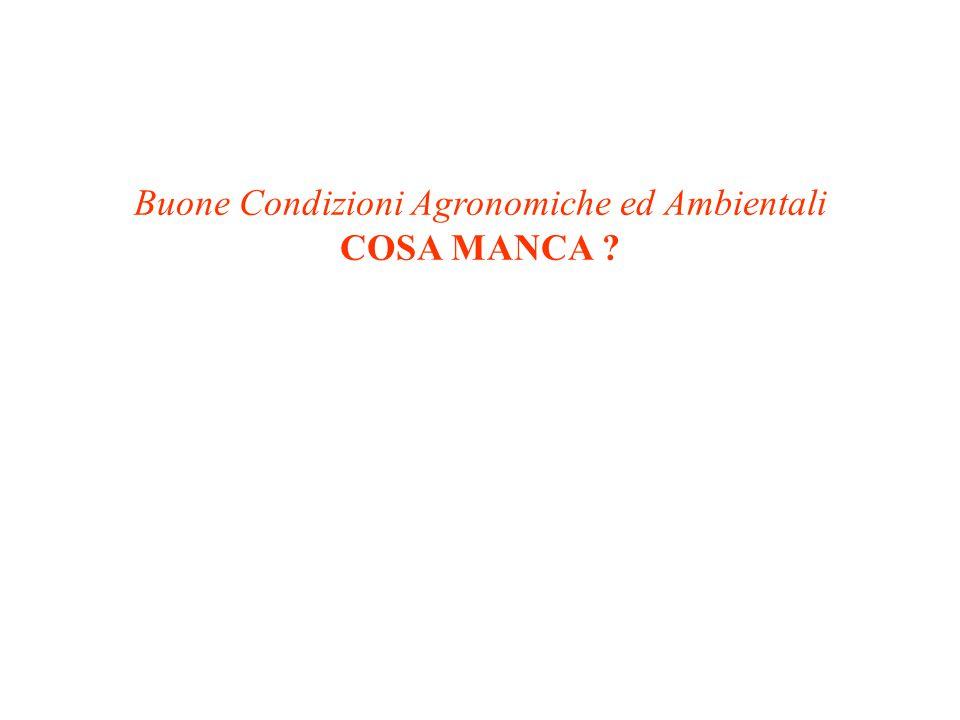 Buone Condizioni Agronomiche ed Ambientali COSA MANCA