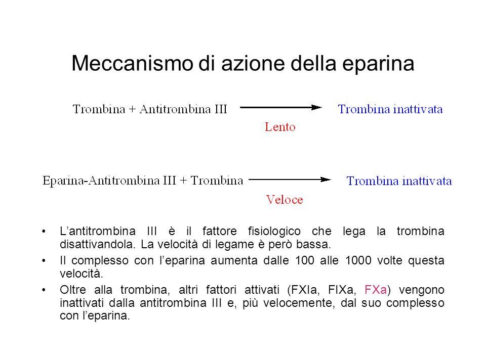Meccanismo di azione della eparina