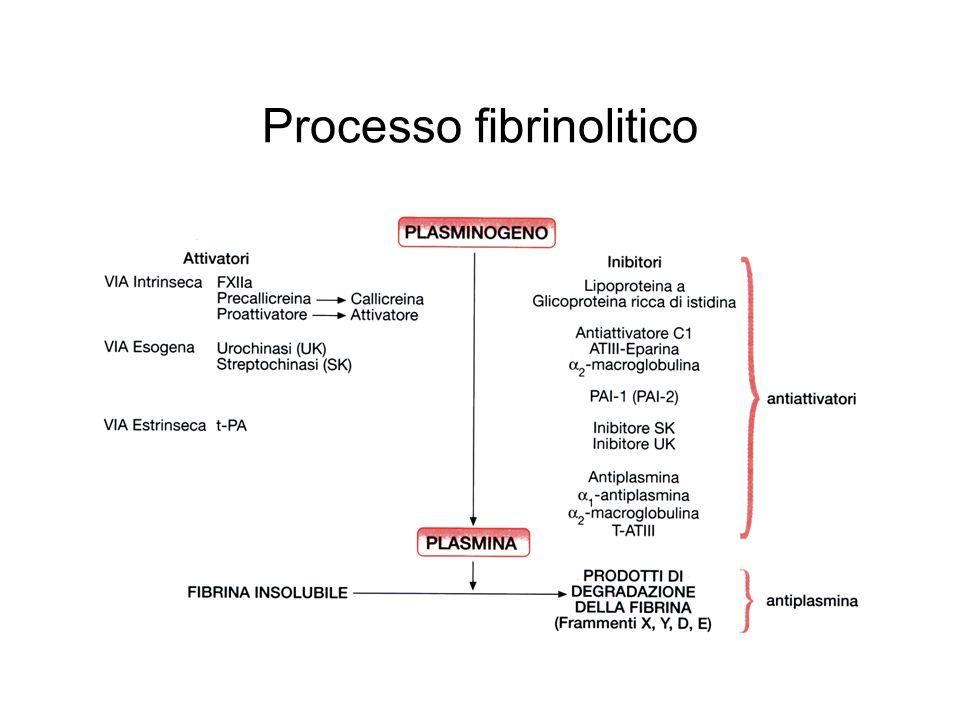 Processo fibrinolitico