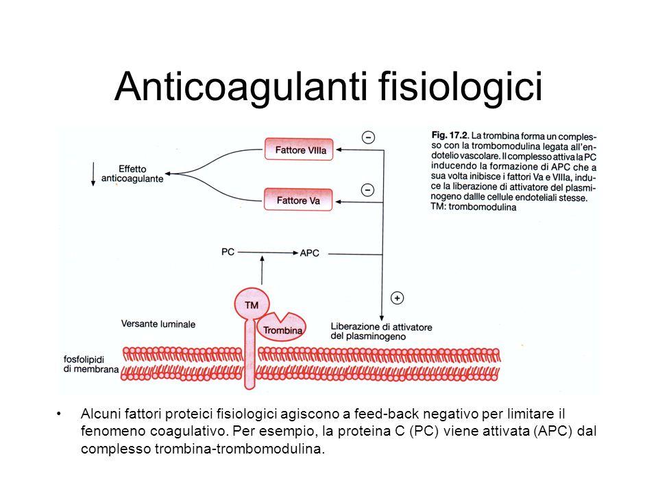 Anticoagulanti fisiologici