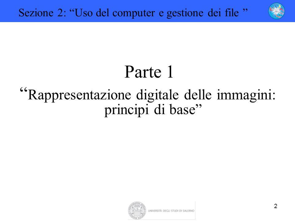 Rappresentazione digitale delle immagini: principi di base