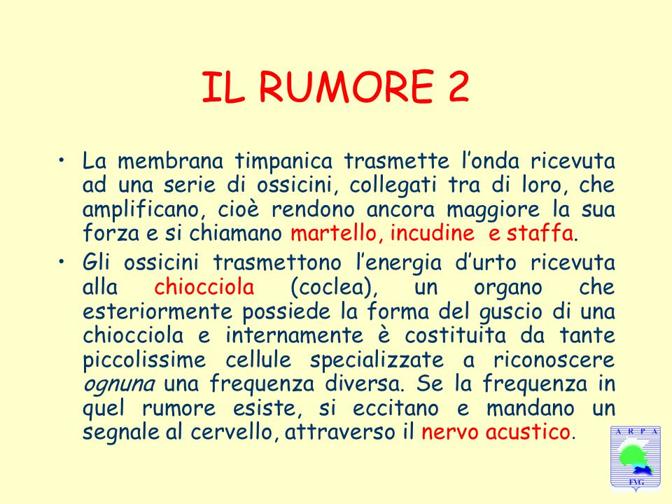 IL RUMORE 2