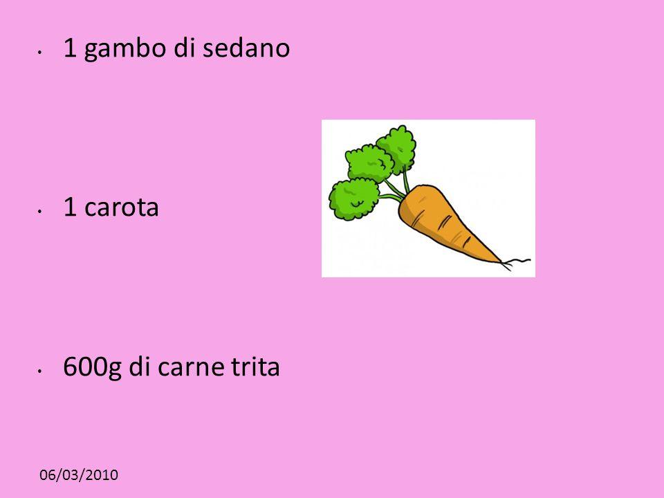 1 gambo di sedano 1 carota 600g di carne trita 06/03/2010