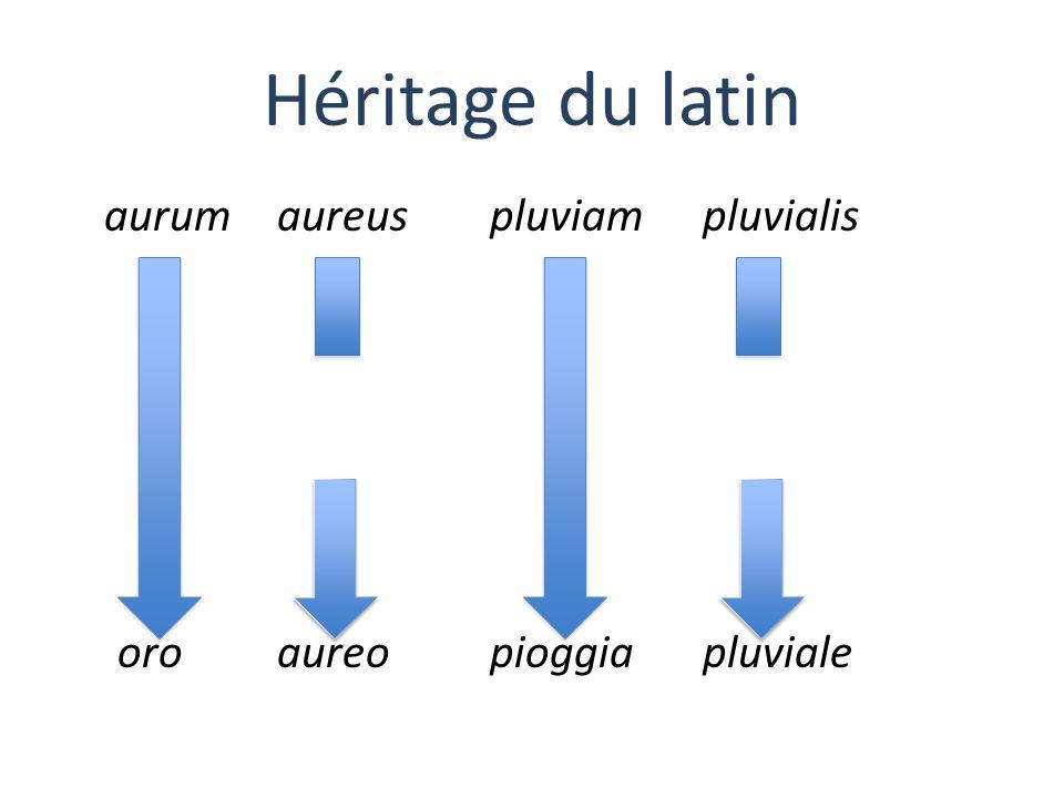 Héritage du latin aurum aureus pluviam pluvialis oro aureo pioggia pluviale
