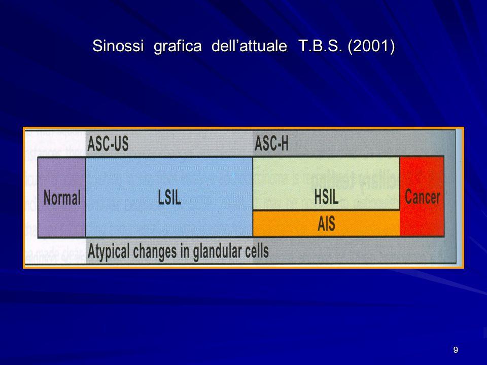 Sinossi grafica dell'attuale T.B.S. (2001)