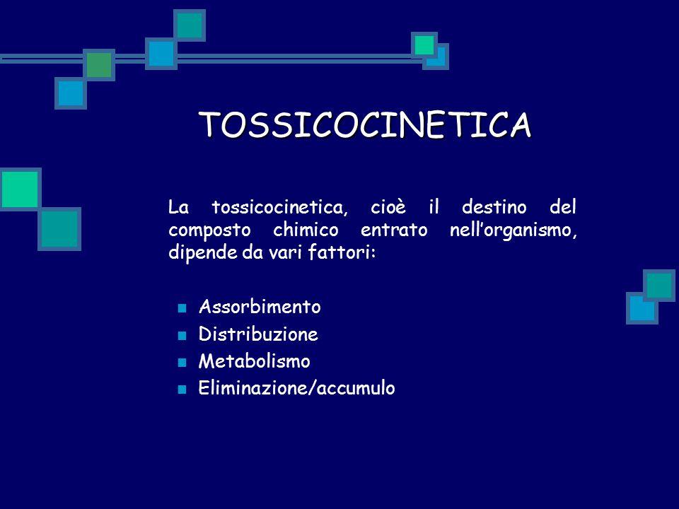 TOSSICOCINETICA La tossicocinetica, cioè il destino del composto chimico entrato nell'organismo, dipende da vari fattori: