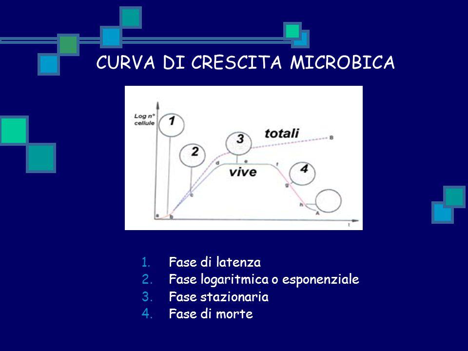 CURVA DI CRESCITA MICROBICA
