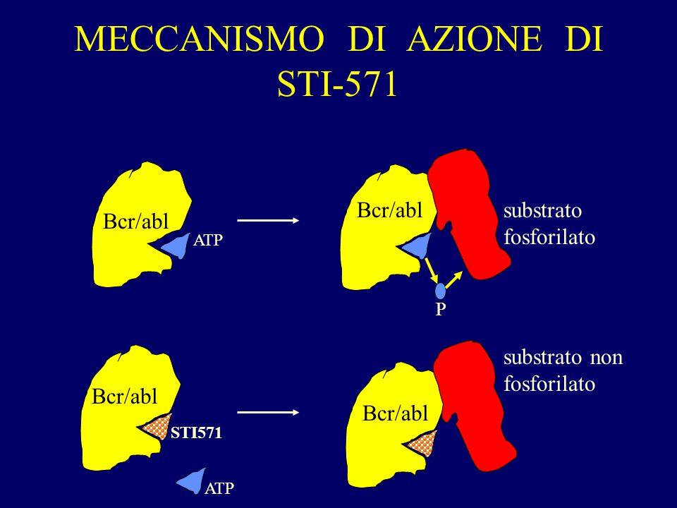 MECCANISMO DI AZIONE DI STI-571