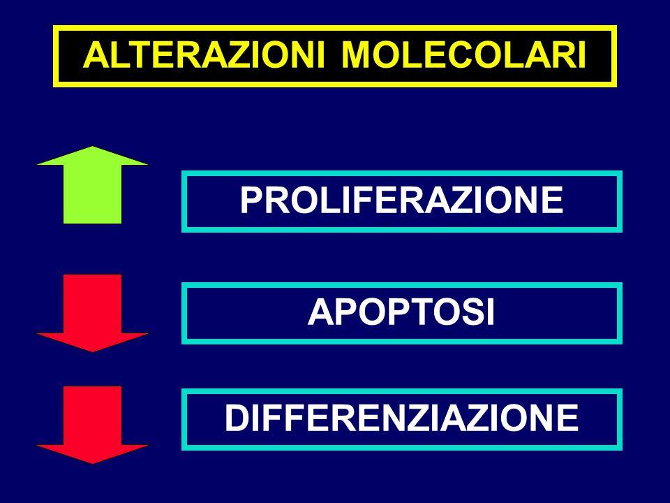 ALTERAZIONI MOLECOLARI