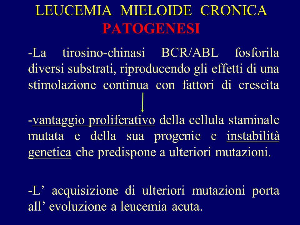 LEUCEMIA MIELOIDE CRONICA PATOGENESI