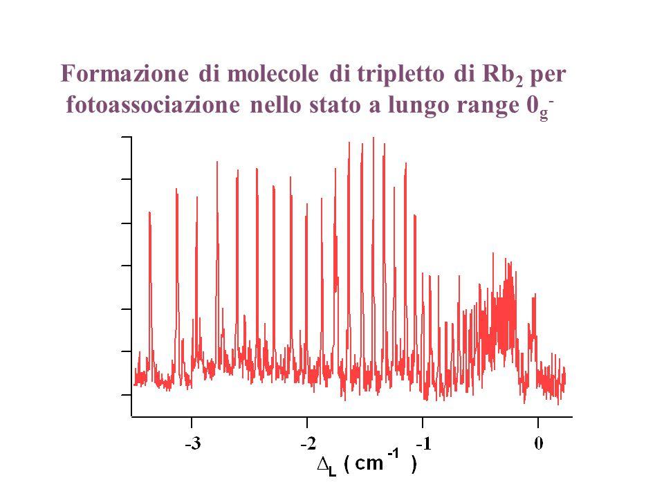 Formazione di molecole di tripletto di Rb2 per fotoassociazione nello stato a lungo range 0g-