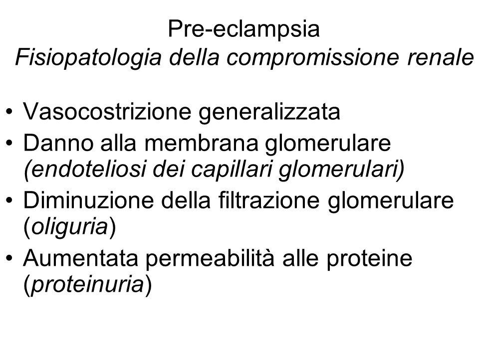 Pre-eclampsia Fisiopatologia della compromissione renale