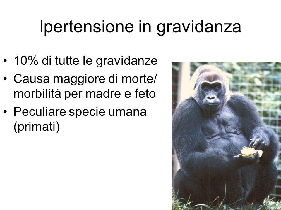 Ipertensione in gravidanza