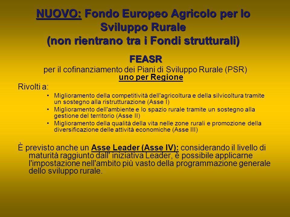 NUOVO: Fondo Europeo Agricolo per lo Sviluppo Rurale (non rientrano tra i Fondi strutturali)