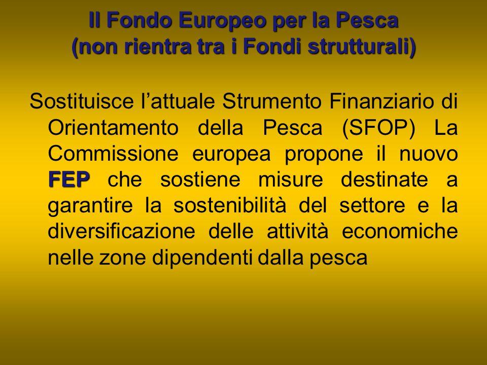 Il Fondo Europeo per la Pesca (non rientra tra i Fondi strutturali)