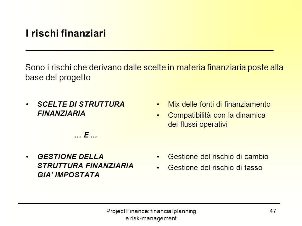 I rischi finanziari ____________________________________________