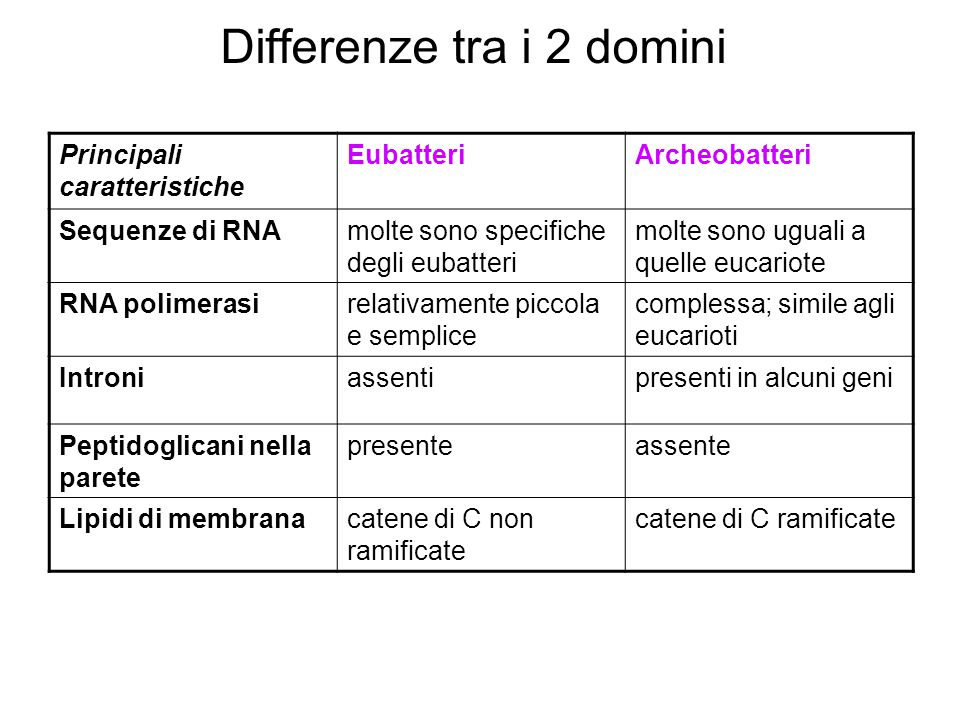 Differenze tra i 2 domini