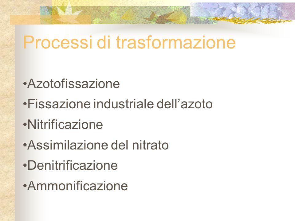 Processi di trasformazione