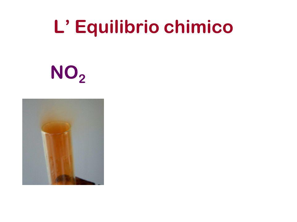 L' Equilibrio chimico NO2