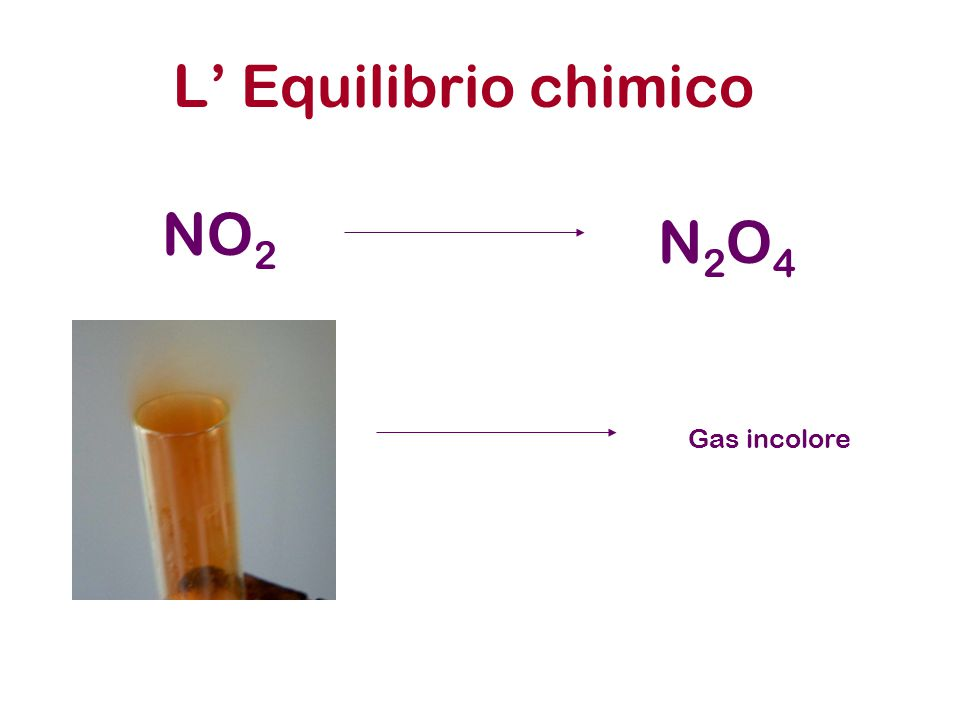 L' Equilibrio chimico NO2 N2O4 Gas incolore