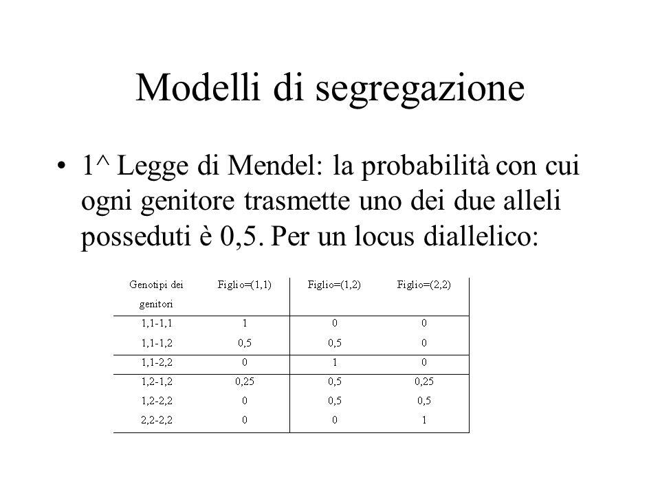 Modelli di segregazione