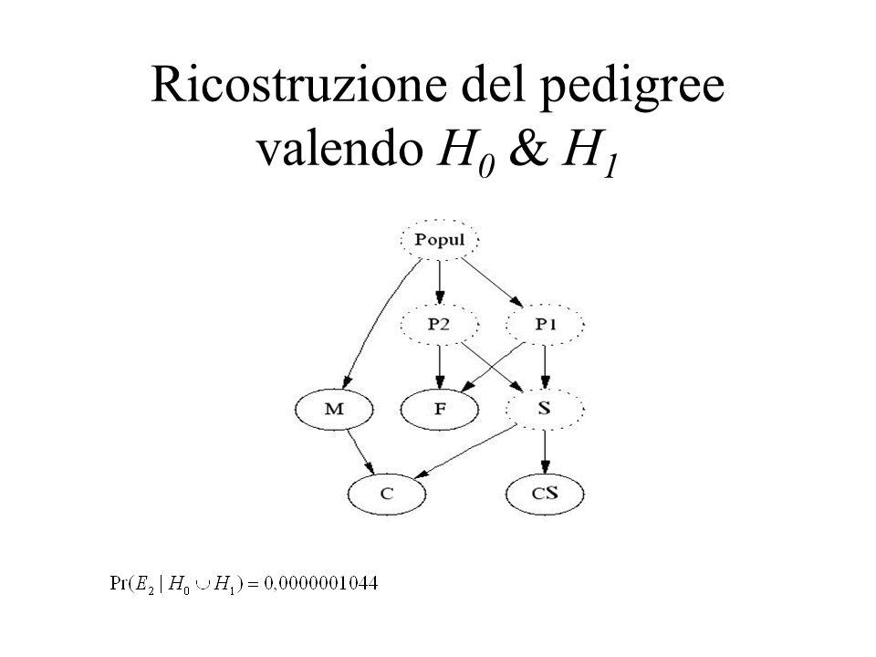 Ricostruzione del pedigree valendo H0 & H1