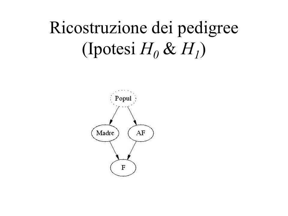 Ricostruzione dei pedigree (Ipotesi H0 & H1)