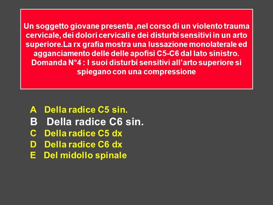 B Della radice C6 sin. A Della radice C5 sin. C Della radice C5 dx