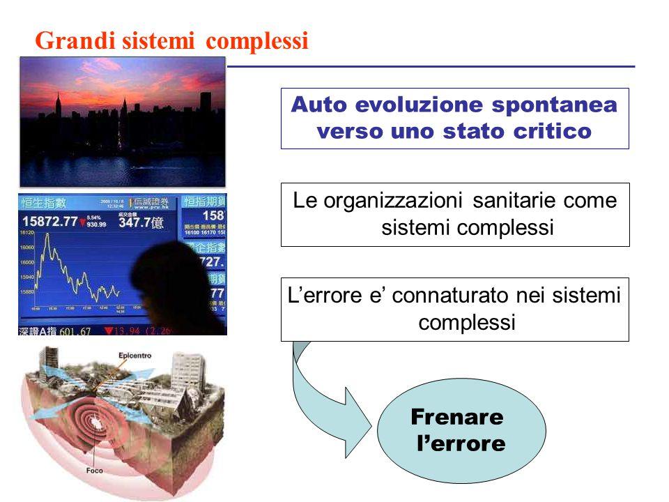 Grandi sistemi complessi