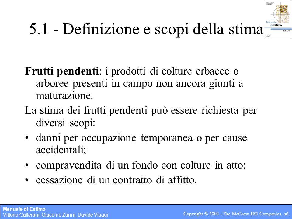 5.1 - Definizione e scopi della stima