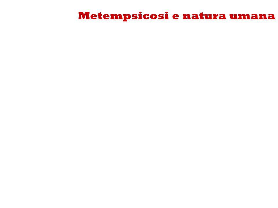 Metempsicosi e natura umana