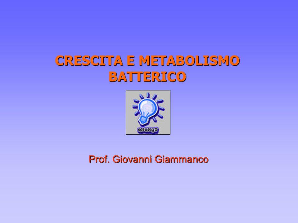 CRESCITA E METABOLISMO BATTERICO